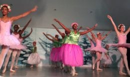 Ballet- The Academy of Dance and Art