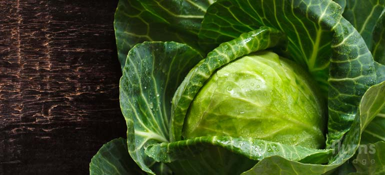Cabbage is more than flatulence