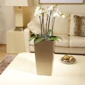 Cubico-22-Pearl-Beige-with-orchids-in-living-room